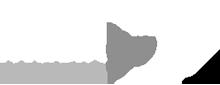 musingo - Logo - Startseite